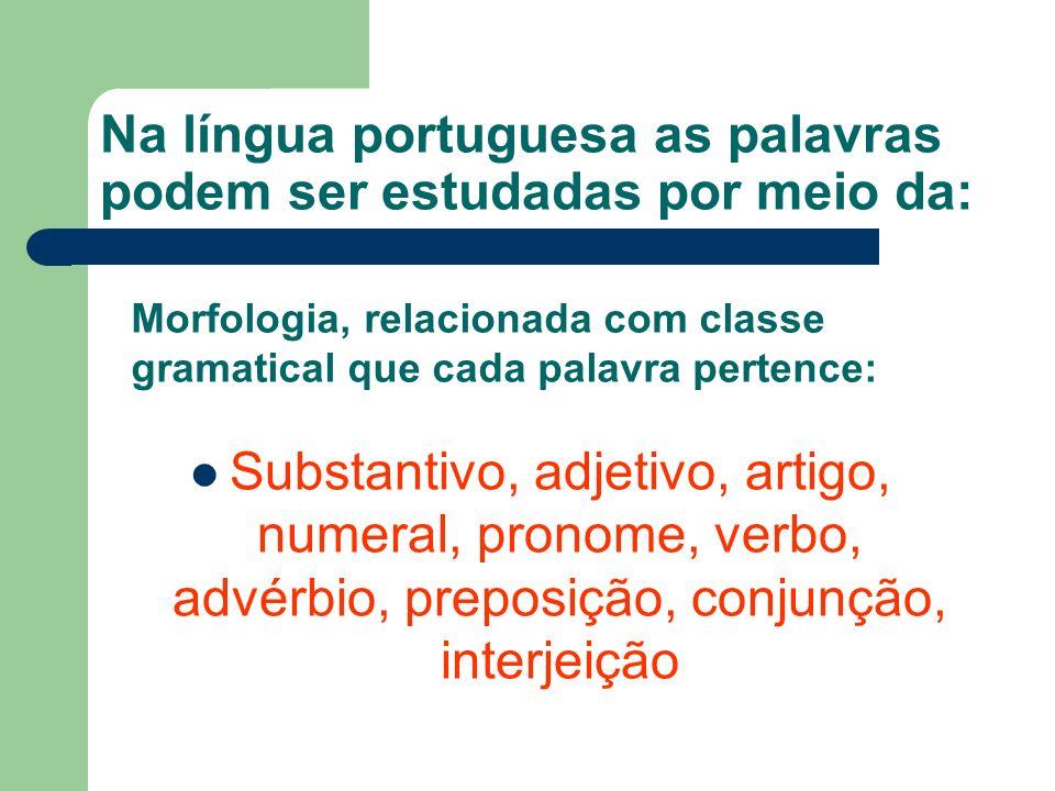 Na língua portuguesa as palavras podem ser estudadas por meio da: Substantivo, adjetivo, artigo, numeral, pronome, verbo, advérbio, preposição, conjunção, interjeição Morfologia, relacionada com classe gramatical que cada palavra pertence: