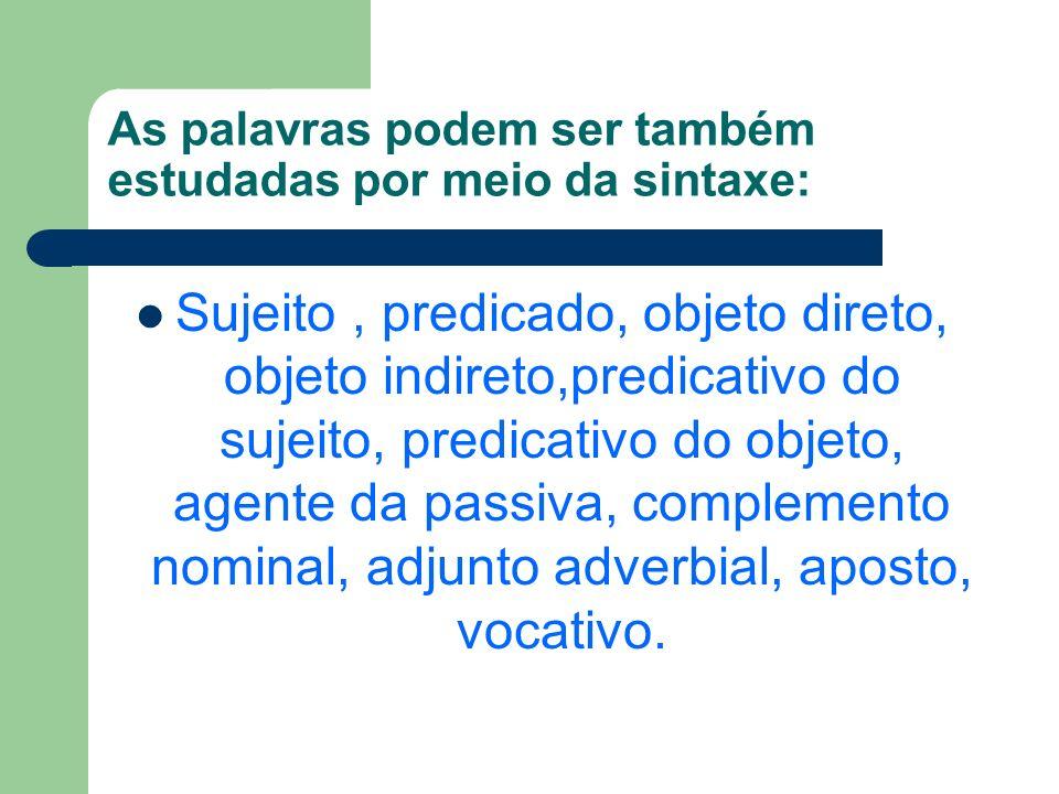 As palavras podem ser também estudadas por meio da sintaxe: Sujeito, predicado, objeto direto, objeto indireto,predicativo do sujeito, predicativo do objeto, agente da passiva, complemento nominal, adjunto adverbial, aposto, vocativo.