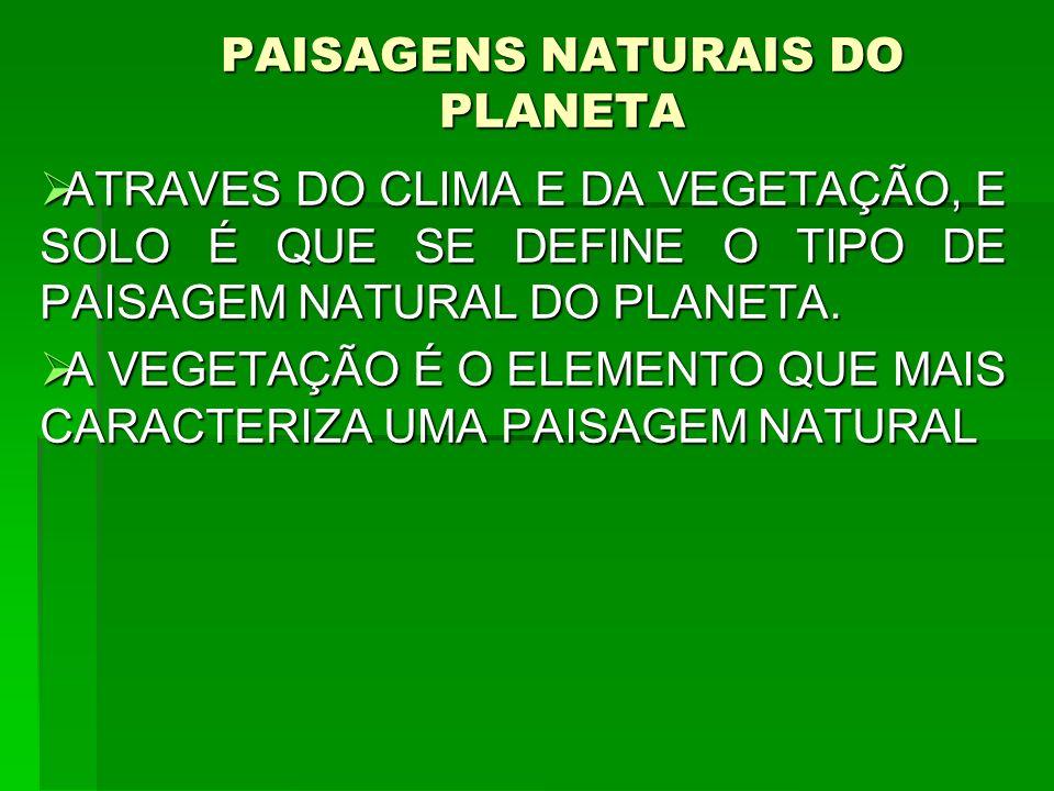 PAISAGENS NATURAIS DO PLANETA ATRAVES DO CLIMA E DA VEGETAÇÃO, E SOLO É QUE SE DEFINE O TIPO DE PAISAGEM NATURAL DO PLANETA. ATRAVES DO CLIMA E DA VEG