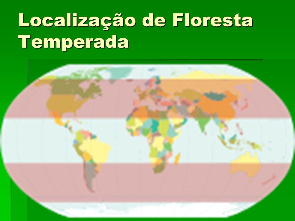 Localização de Floresta Temperada
