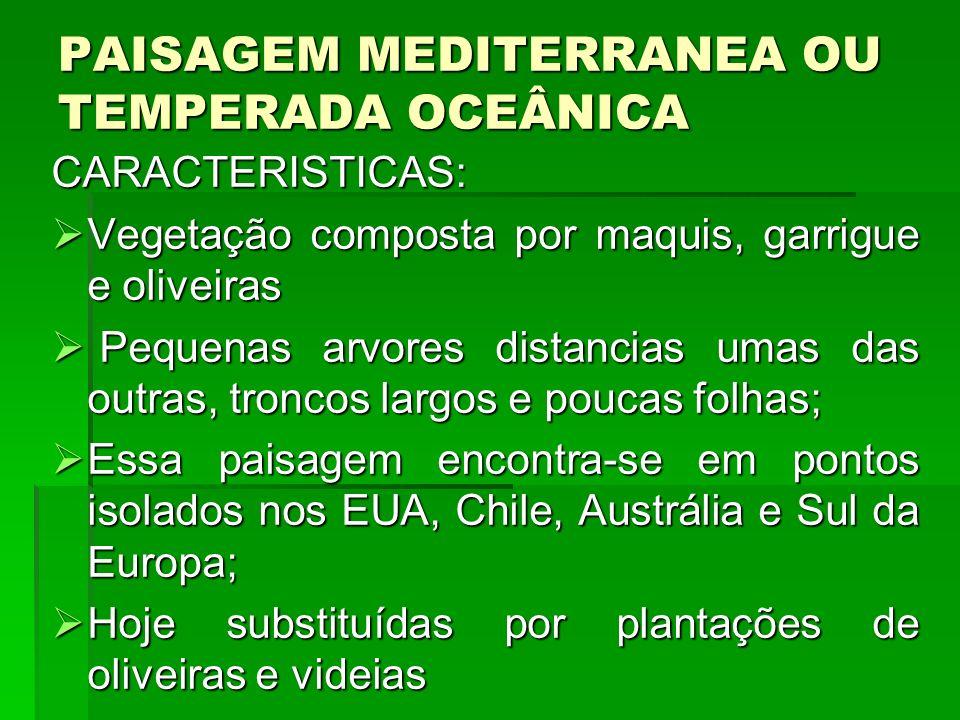 PAISAGEM MEDITERRANEA OU TEMPERADA OCEÂNICA CARACTERISTICAS: Vegetação composta por maquis, garrigue e oliveiras Vegetação composta por maquis, garrig