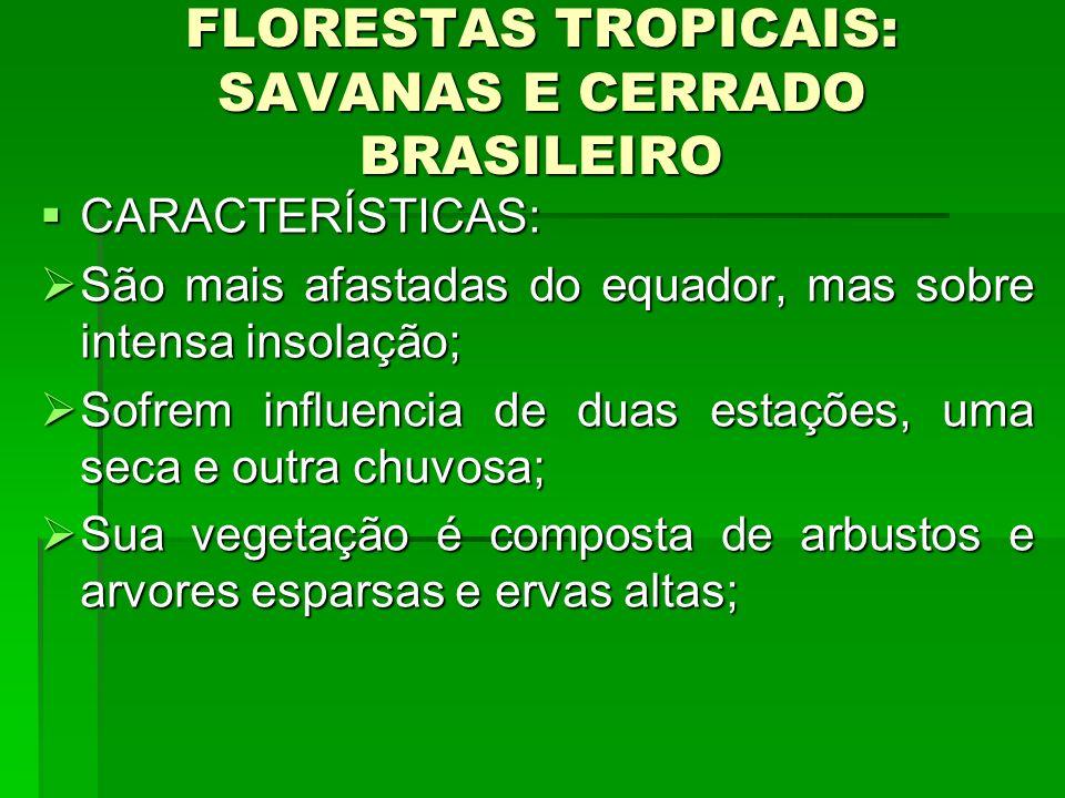 FLORESTAS TROPICAIS: SAVANAS E CERRADO BRASILEIRO CARACTERÍSTICAS: CARACTERÍSTICAS: São mais afastadas do equador, mas sobre intensa insolação; São ma