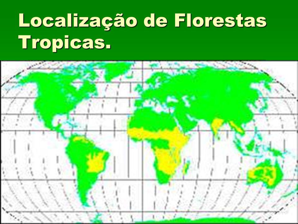 Localização de Florestas Tropicas.