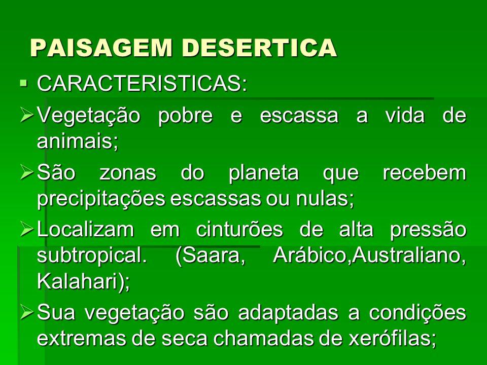 PAISAGEM DESERTICA CARACTERISTICAS: CARACTERISTICAS: Vegetação pobre e escassa a vida de animais; Vegetação pobre e escassa a vida de animais; São zon