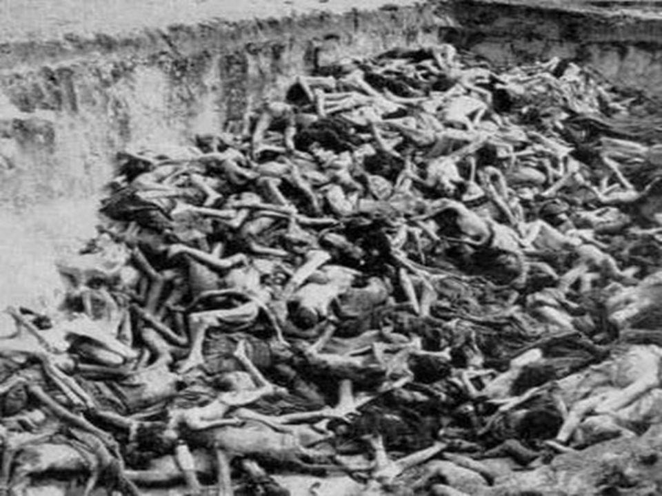TOTALITARISMO O Nazismo pode ser explicado de alguns pontos de vista: O Nazismo pode ser explicado de alguns pontos de vista: - Estético ( a criação d