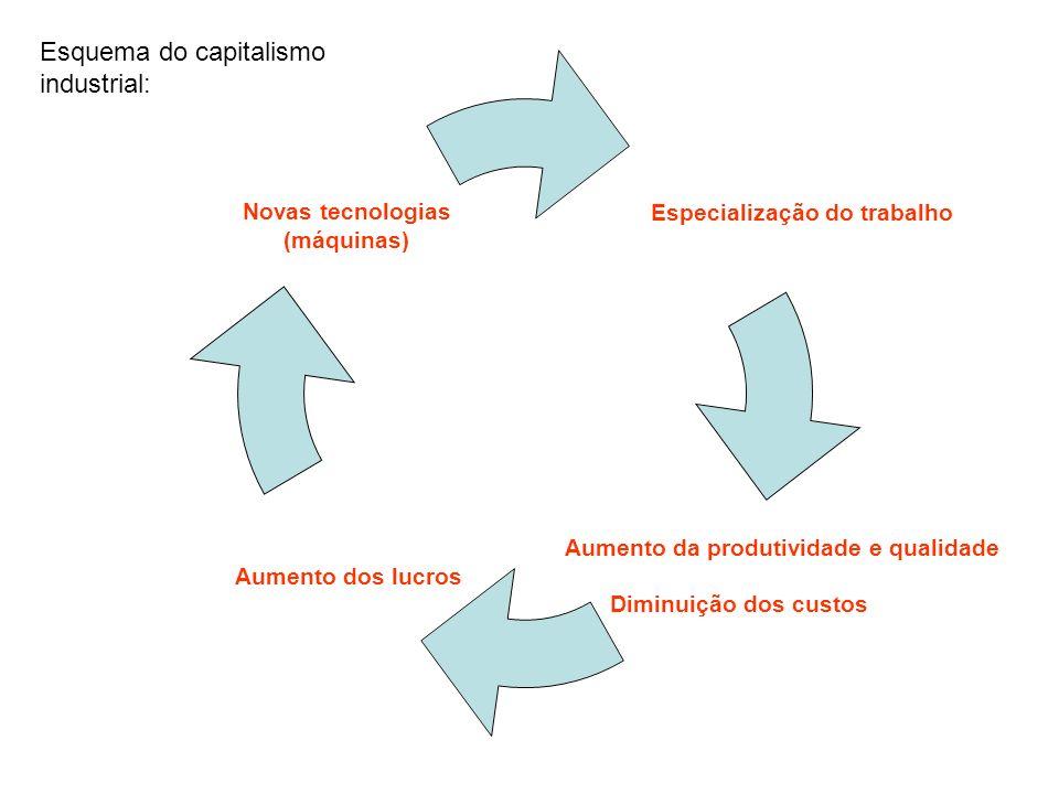 Especialização do trabalho Aumento da produtividade e qualidade Diminuição dos custos Aumento dos lucros Novas tecnologias (máquinas) Esquema do capitalismo industrial: