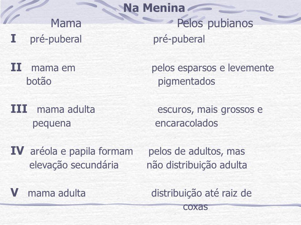Na Menina Mama Pelos pubianos I pré-puberal pré-puberal II mama em pelos esparsos e levemente botão pigmentados III mama adulta escuros, mais grossos