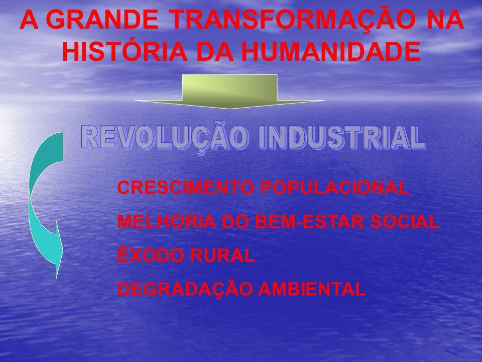 CRESCIMENTO POPULACIONAL MELHORIA DO BEM-ESTAR SOCIAL ÊXODO RURAL DEGRADAÇÃO AMBIENTAL A GRANDE TRANSFORMAÇÃO NA HISTÓRIA DA HUMANIDADE