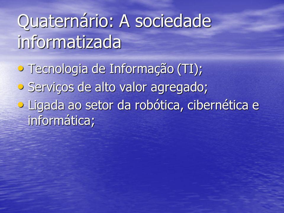 Quaternário: A sociedade informatizada Tecnologia de Informação (TI); Tecnologia de Informação (TI); Serviços de alto valor agregado; Serviços de alto