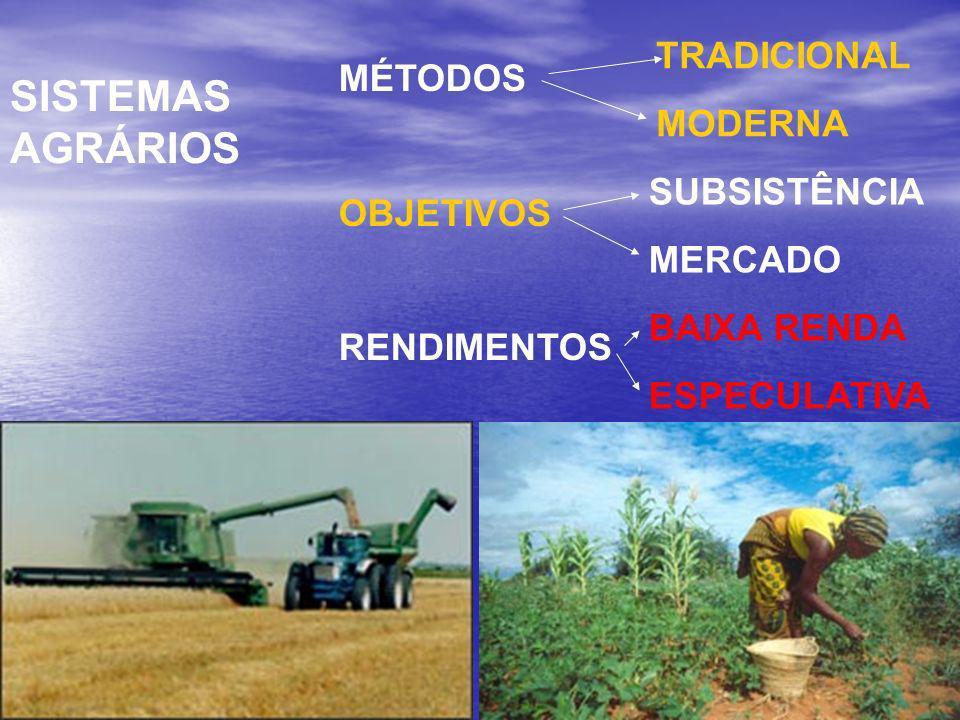 SISTEMAS AGRÁRIOS MÉTODOS OBJETIVOS RENDIMENTOS TRADICIONAL MODERNA SUBSISTÊNCIA MERCADO BAIXA RENDA ESPECULATIVA