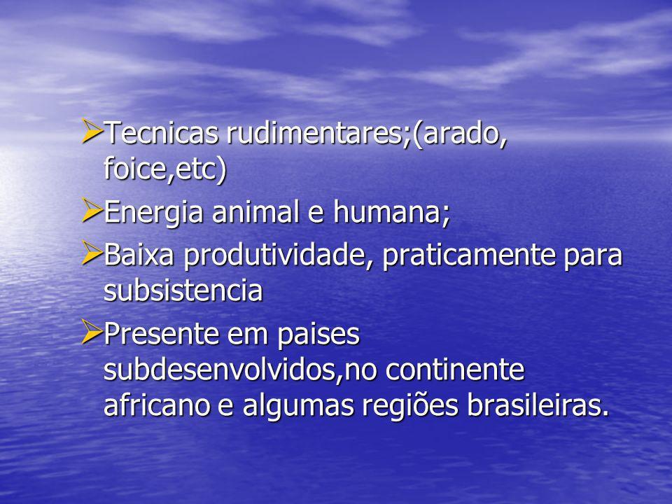 Tecnicas rudimentares;(arado, foice,etc) Tecnicas rudimentares;(arado, foice,etc) Energia animal e humana; Energia animal e humana; Baixa produtividad
