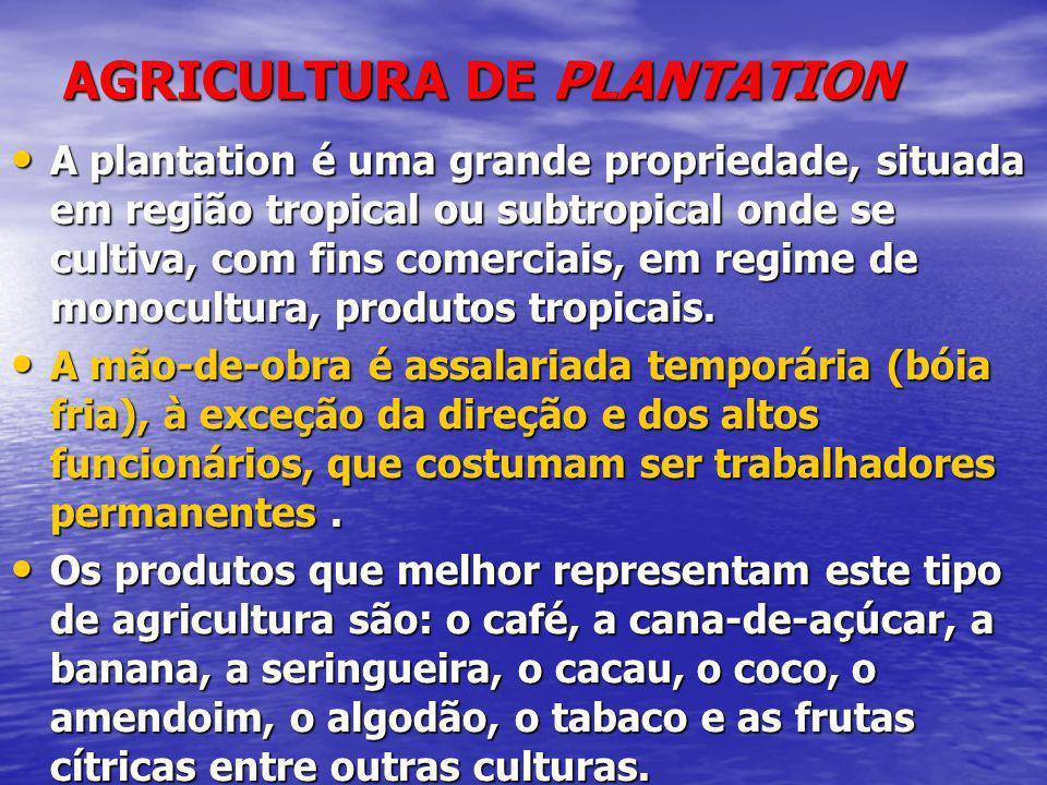 AGRICULTURA DE PLANTATION A plantation é uma grande propriedade, situada em região tropical ou subtropical onde se cultiva, com fins comerciais, em re