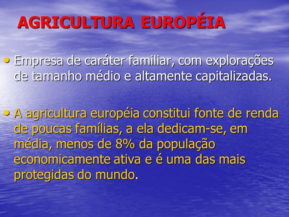 AGRICULTURA EUROPÉIA Empresa de caráter familiar, com explorações de tamanho médio e altamente capitalizadas. Empresa de caráter familiar, com explora