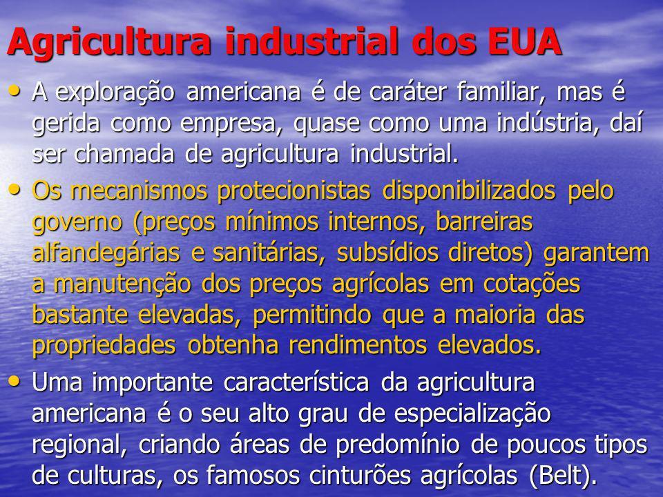 Agricultura industrial dos EUA A exploração americana é de caráter familiar, mas é gerida como empresa, quase como uma indústria, daí ser chamada de a