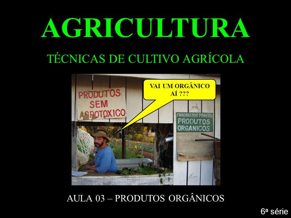 AGRICULTURA TÉCNICAS DE CULTIVO AGRÍCOLA AULA 03 – PRODUTOS ORGÂNICOS 6 a série VAI UM ORGÂNICO AÍ ???