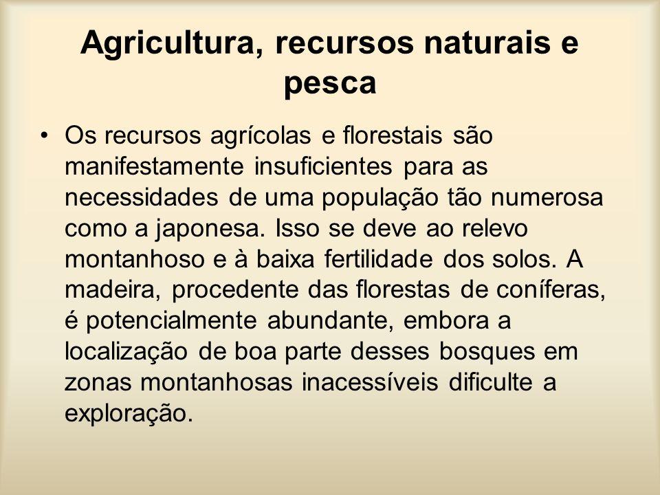 Agricultura, recursos naturais e pesca Os recursos agrícolas e florestais são manifestamente insuficientes para as necessidades de uma população tão n