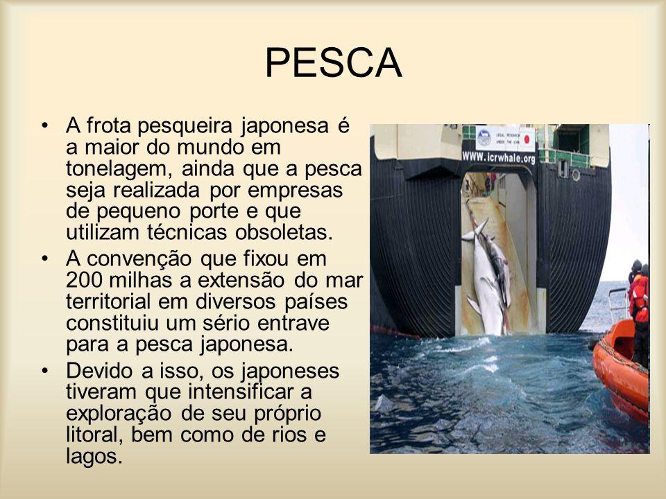 PESCA A frota pesqueira japonesa é a maior do mundo em tonelagem, ainda que a pesca seja realizada por empresas de pequeno porte e que utilizam técnic