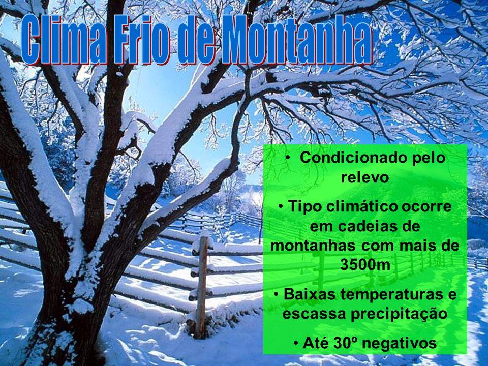 Condicionado pelo relevo Tipo climático ocorre em cadeias de montanhas com mais de 3500m Baixas temperaturas e escassa precipitação Até 30º negativos