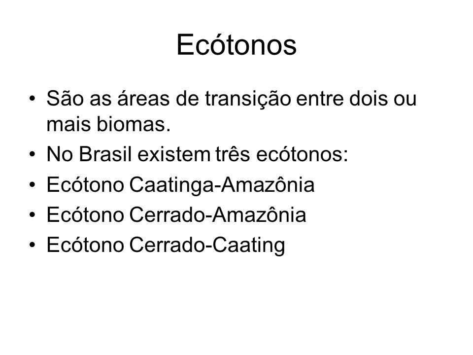 Ecótonos São as áreas de transição entre dois ou mais biomas. No Brasil existem três ecótonos: Ecótono Caatinga-Amazônia Ecótono Cerrado-Amazônia Ecót