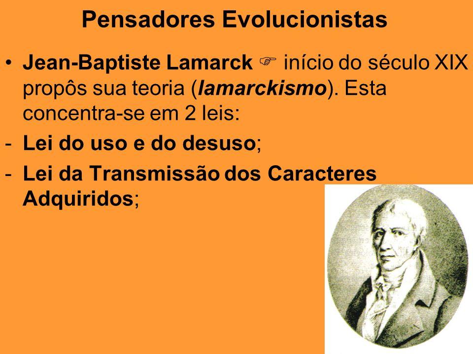 Pensadores Evolucionistas Jean-Baptiste Lamarck início do século XIX propôs sua teoria (lamarckismo). Esta concentra-se em 2 leis: -Lei do uso e do de