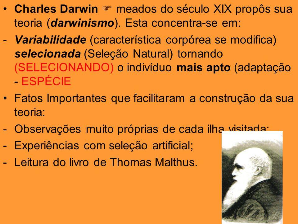 Charles Darwin meados do século XIX propôs sua teoria (darwinismo). Esta concentra-se em: -Variabilidade (característica corpórea se modifica) selecio