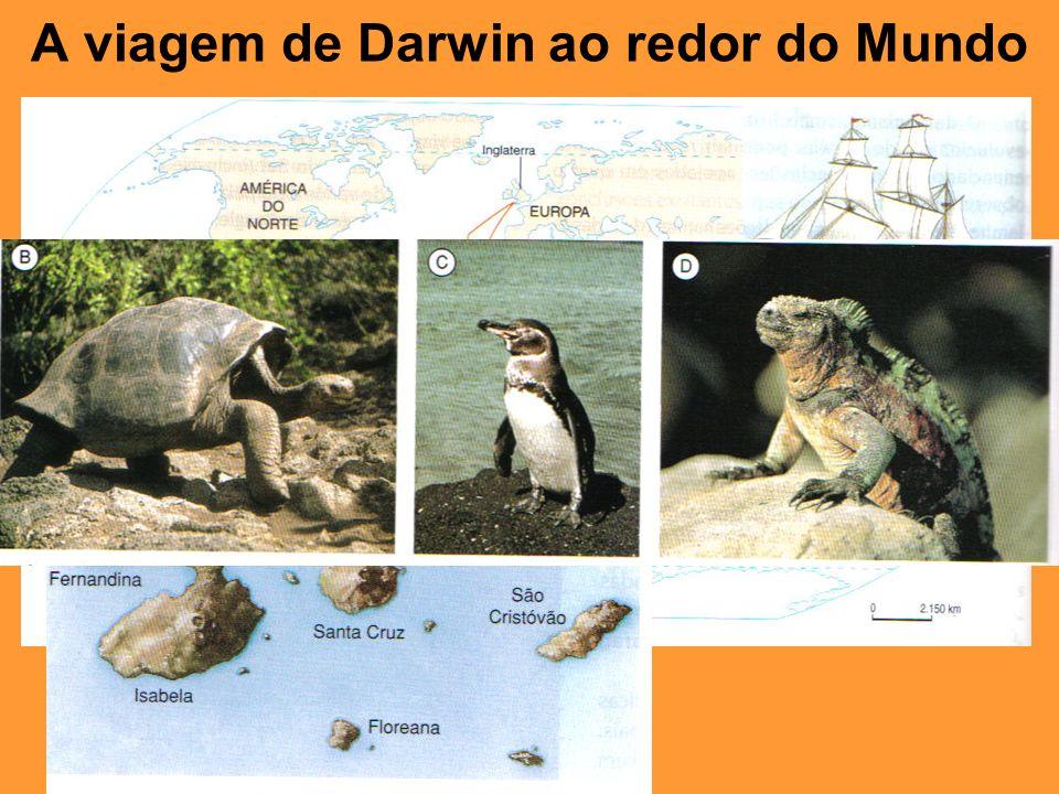 A viagem de Darwin ao redor do Mundo