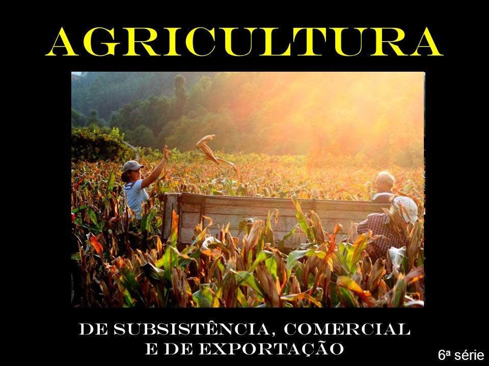 AGRICULTURA DE SUBSISTÊNCIA, COMERCIAL E DE EXPORTAÇÃO 6 a série