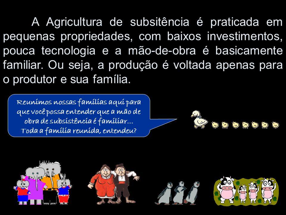 A Agricultura de subsitência é praticada em pequenas propriedades, com baixos investimentos, pouca tecnologia e a mão-de-obra é basicamente familiar.