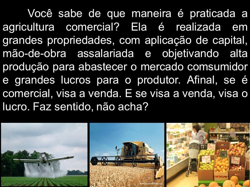 Você sabe de que maneira é praticada a agricultura comercial? Ela é realizada em grandes propriedades, com aplicação de capital, mão-de-obra assalaria