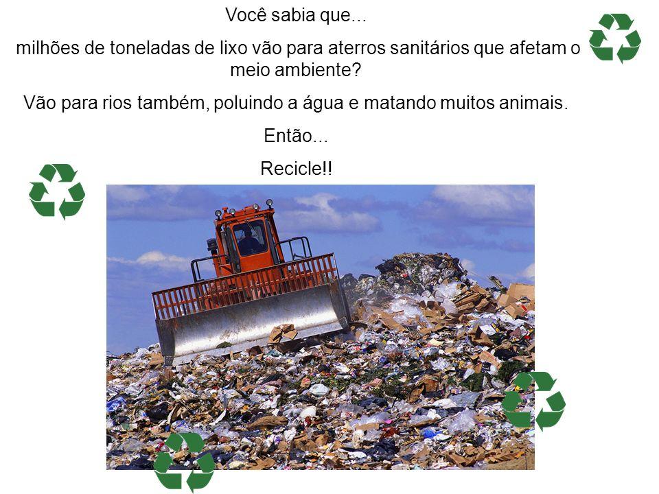 Você sabia que... milhões de toneladas de lixo vão para aterros sanitários que afetam o meio ambiente? Vão para rios também, poluindo a água e matando