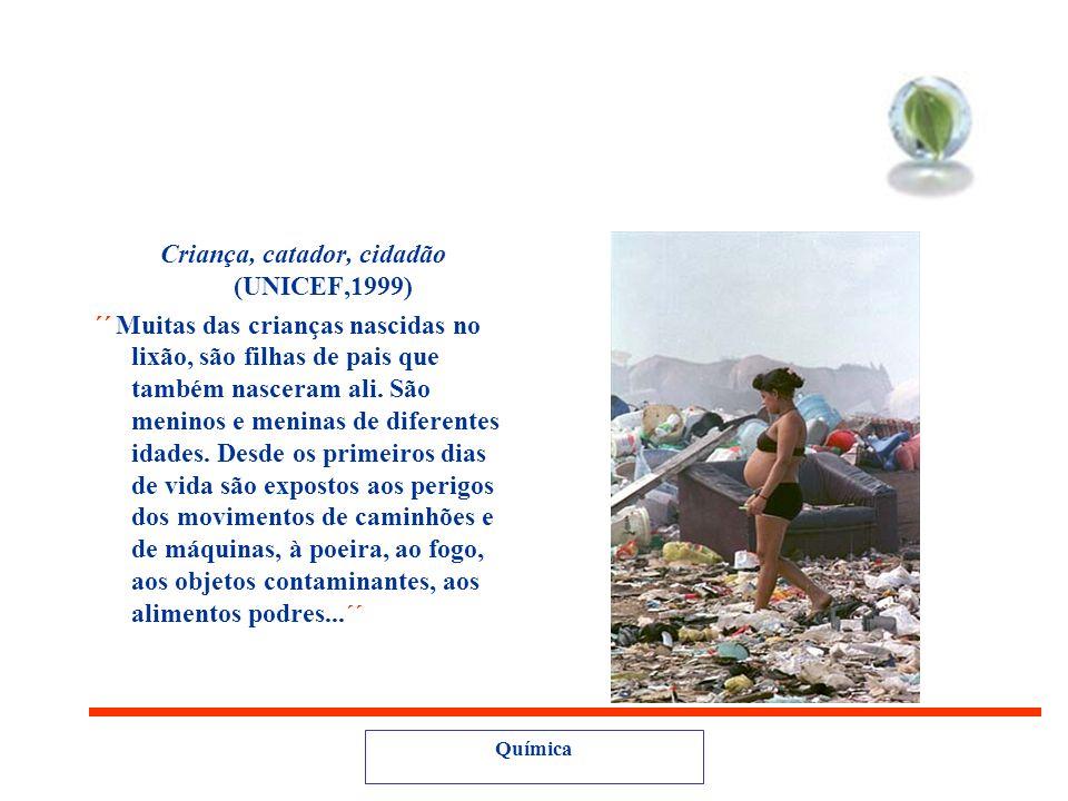 Pesquisa UNICEF (2000) Existem Lixões: 26% das capitais brasileiras. 73% dos municípios com mais de 50 mil habitantes. 70% dos municípios co menos de