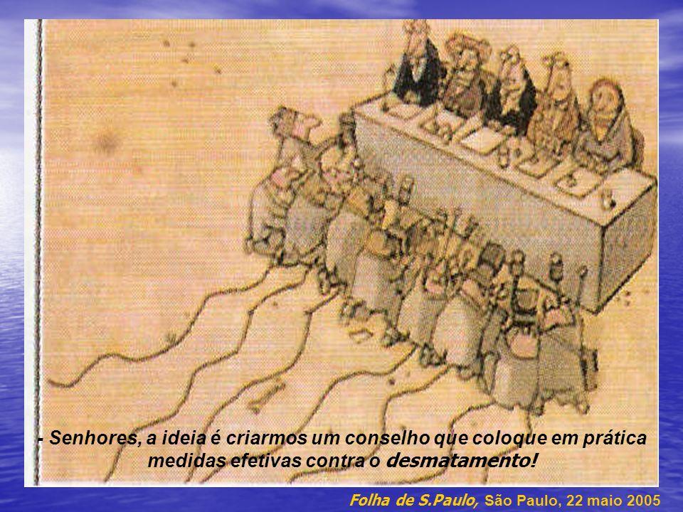- Senhores, a ideia é criarmos um conselho que coloque em prática medidas efetivas contra o desmatamento! Folha de S.Paulo, São Paulo, 22 maio 2005