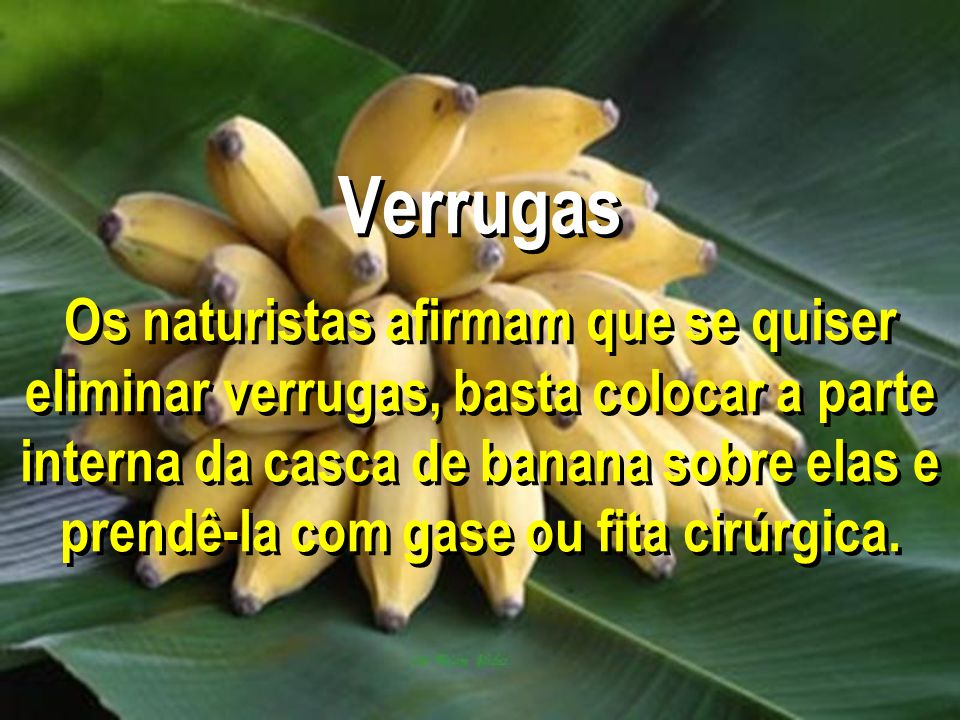 Verrugas Os naturistas afirmam que se quiser eliminar verrugas, basta colocar a parte interna da casca de banana sobre elas e prendê-la com gase ou fi