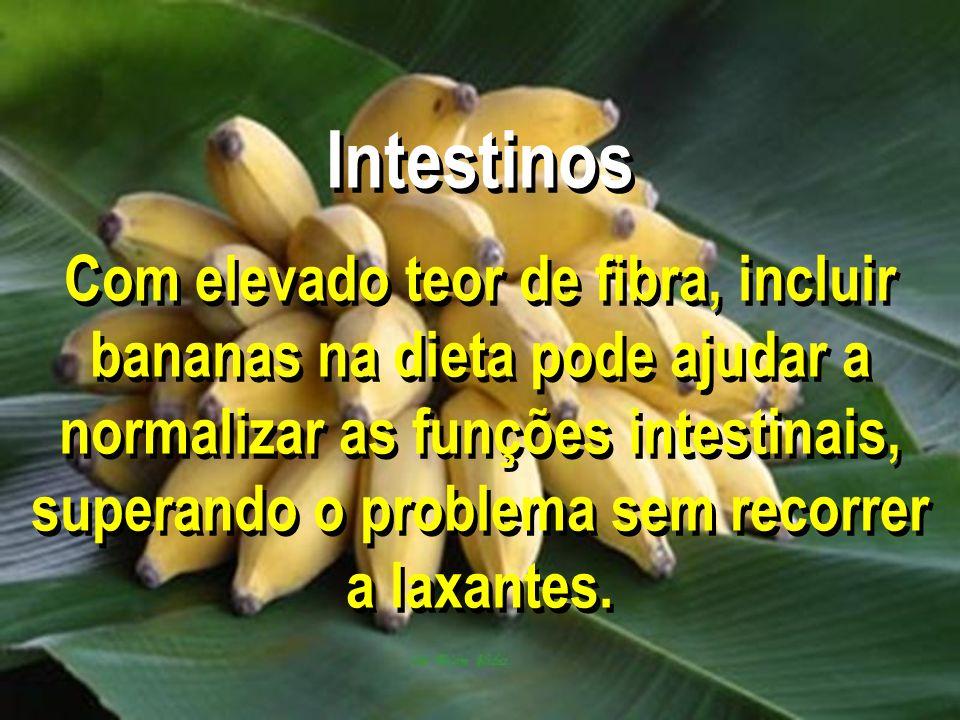 Intestinos Com elevado teor de fibra, incluir bananas na dieta pode ajudar a normalizar as funções intestinais, superando o problema sem recorrer a la