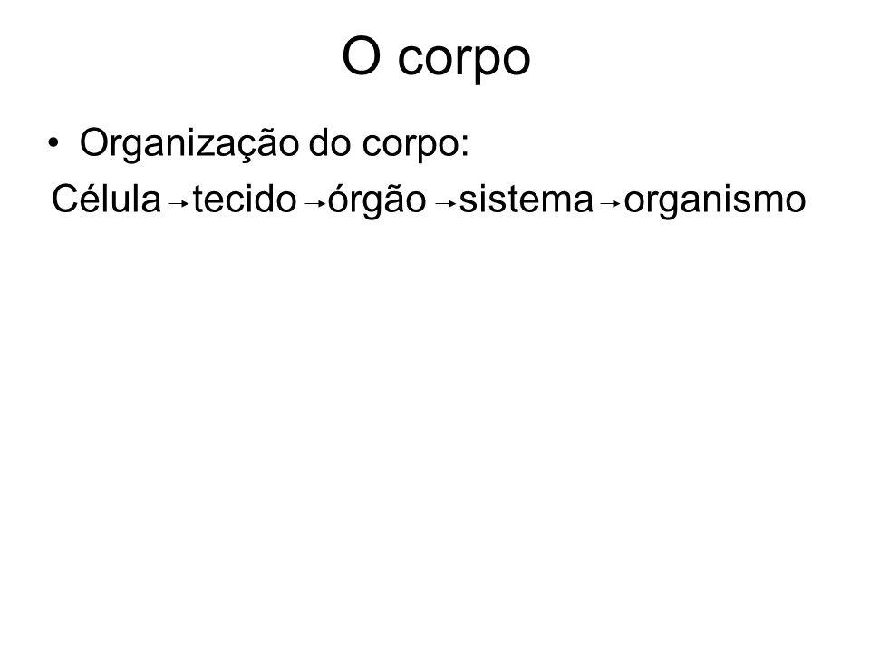 O corpo Organização do corpo: Célula tecido órgão sistema organismo