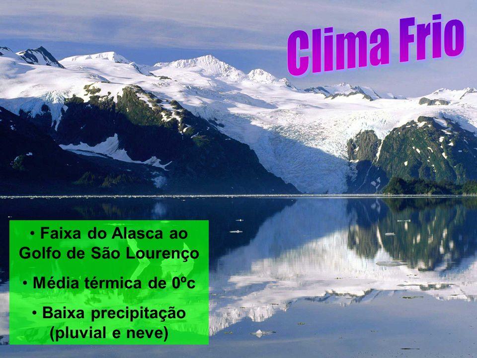 Faixa do Alasca ao Golfo de São Lourenço Média térmica de 0ºc Baixa precipitação (pluvial e neve)