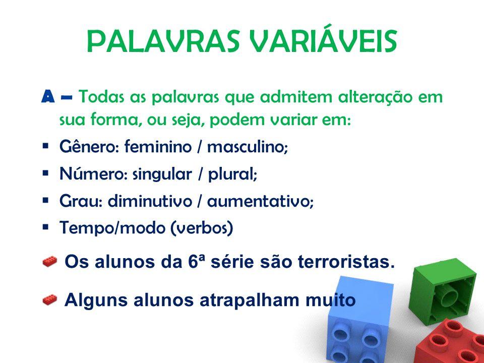MORFOLOGIA Parte da gramática que estuda as Classes de Palavras. Na Língua Portuguesa há dois grupos distintos de palavras: PALAVRAS VARIÁVEIS (A); PA