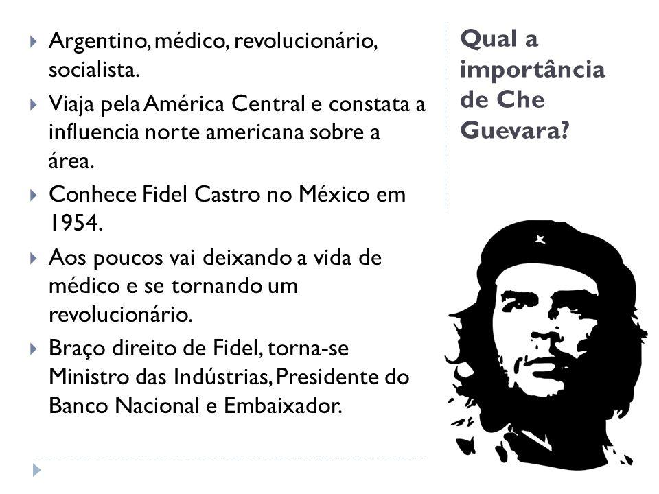Qual a importância de Che Guevara? Argentino, médico, revolucionário, socialista. Viaja pela América Central e constata a influencia norte americana s