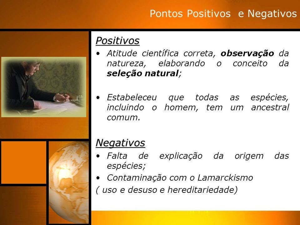 Pontos Positivos e NegativosPositivos Atitude científica correta, observação da natureza, elaborando o conceito da seleção natural; Estabeleceu que to
