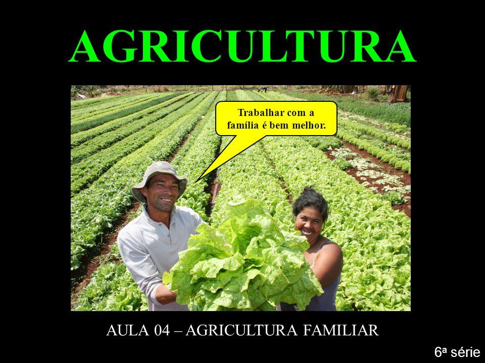AGRICULTURA AULA 04 – AGRICULTURA FAMILIAR 6 a série Trabalhar com a família é bem melhor.
