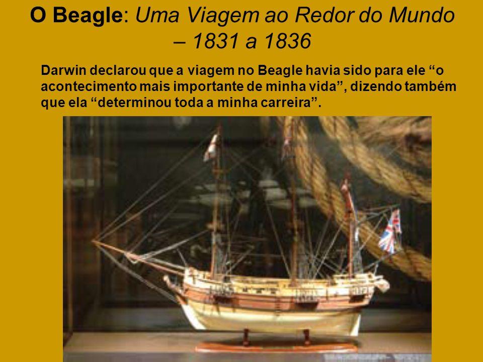 O Beagle: Uma Viagem ao Redor do Mundo – 1831 a 1836 Darwin declarou que a viagem no Beagle havia sido para ele o acontecimento mais importante de min