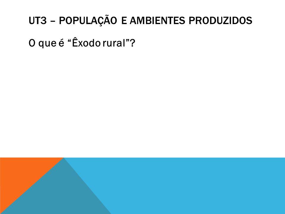 UT3 – POPULAÇÃO E AMBIENTES PRODUZIDOS Explique os seguintes setores da economia: 1- Primário 2- Secundário 3- Terciário 4- Terciário-quaternário