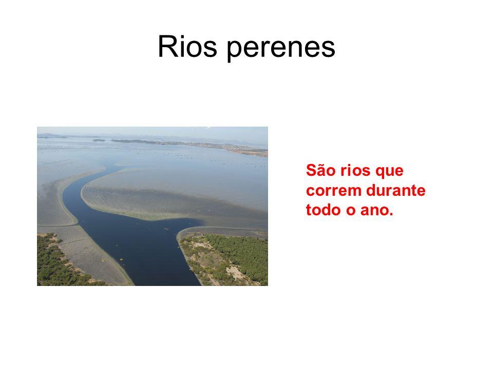 Rios perenes São rios que correm durante todo o ano.