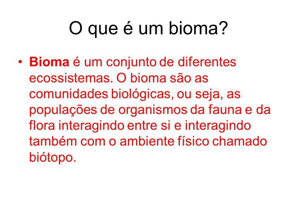 O que é um bioma? Bioma é um conjunto de diferentes ecossistemas. O bioma são as comunidades biológicas, ou seja, as populações de organismos da fauna