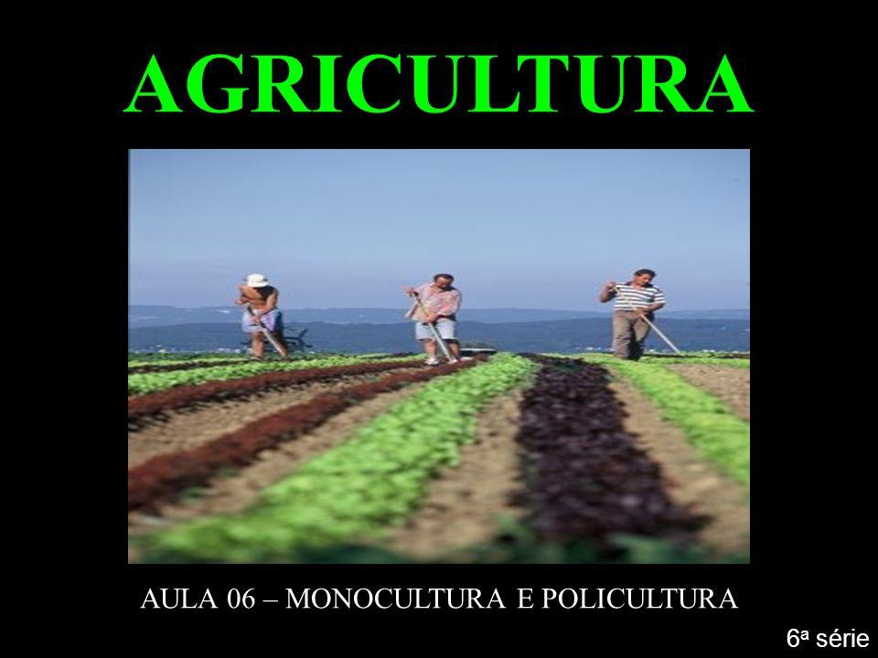 AGRICULTURA AULA 06 – MONOCULTURA E POLICULTURA 6 a série