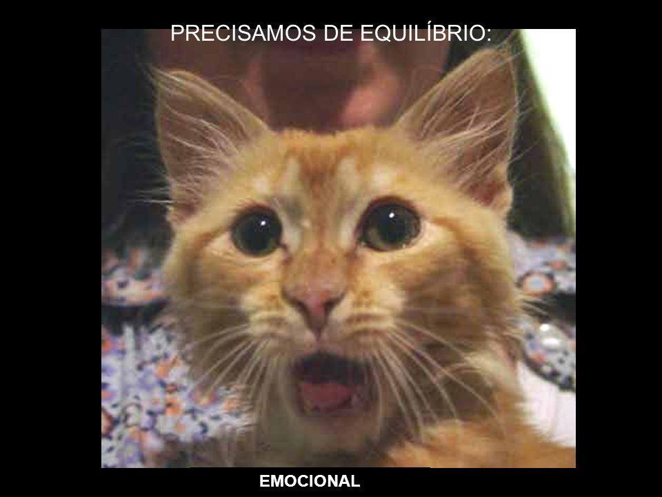 EMOCIONAL PRECISAMOS DE EQUILÍBRIO: