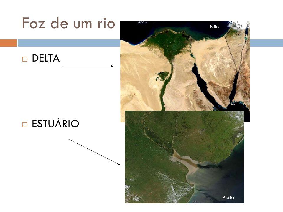 Foz de um rio DELTA ESTUÁRIO Plata Nilo