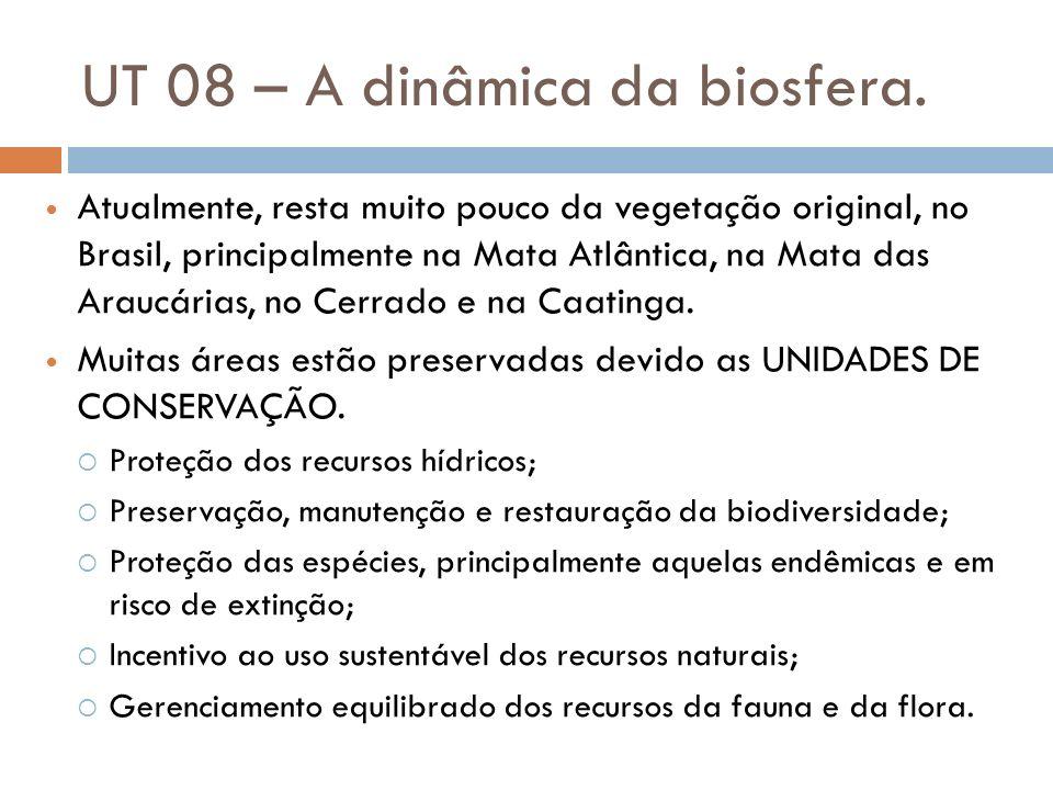 UT 08 – A dinâmica da biosfera. Atualmente, resta muito pouco da vegetação original, no Brasil, principalmente na Mata Atlântica, na Mata das Araucári