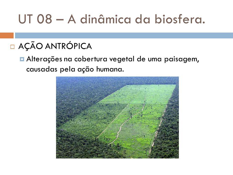 UT 08 – A dinâmica da biosfera. AÇÃO ANTRÓPICA Alterações na cobertura vegetal de uma paisagem, causadas pela ação humana.
