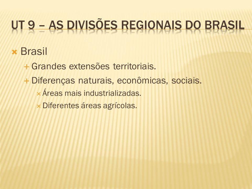 Brasil Grandes extensões territoriais. Diferenças naturais, econômicas, sociais. Áreas mais industrializadas. Diferentes áreas agrícolas.